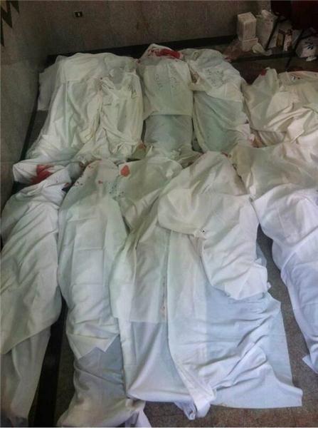 egjipt-viktima