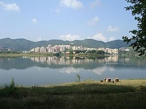 liqeni-artificial