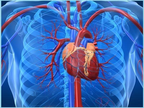 aritmia e zemres